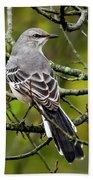 Mockingbird In Tree Beach Towel