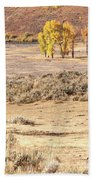 Bison And Cottonwoods Beach Towel