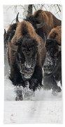 Bison Bulls Run In The Snow Beach Towel