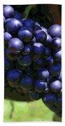 Blue Grape Bunches 5 Beach Towel