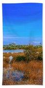 Blue Sky And Marsh Beach Towel by Tom Claud