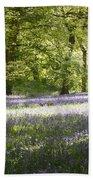 Bluebell Woods Beach Sheet
