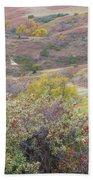 Buffaloberry Prairie Beach Towel