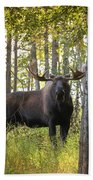 Bull Moose In Fall Forest Beach Towel