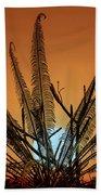 Burmese Fern At Sunset Beach Towel by Chris Lord