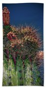 Cactus With Pink Flower Beach Towel