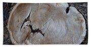 Canal Stumps-058 Beach Sheet