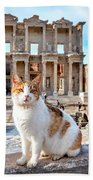 Cat In Front Of The Library Of Celsus Beach Towel