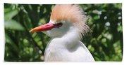 Cattle Egret Profile Beach Towel