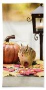 Chipmunk In The Autumn Beach Towel