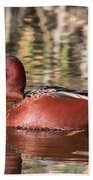 Cinnamon Teal On The Pond Beach Towel