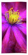 Clematis Flower Beach Towel