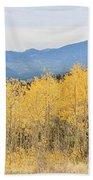 Colorado Autumn In The Mountains Beach Towel