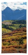Colorado Color Bonanza Beach Sheet