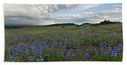 Colorado Evening Wildflower And Cloud Landscape Beach Sheet