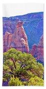 Colorado National Monument Colorado Blue Sky Red Rocks Clouds Trees 2 10212018 2871.jpg Beach Towel