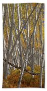 Colorful Stick Forest Beach Sheet