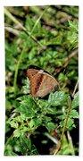 Common Buckeye Butterfly Beach Towel