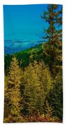 Consecrated Conception  Beach Towel