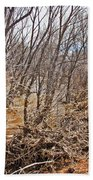 Cottonwood Az Bayou Leafless Trees Scrub Water Sand Clouds 3262019_5320 Beach Towel