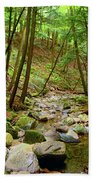 Creek In Massachusetts 2 Beach Towel