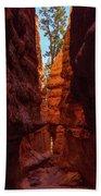Crimson Crevice Beach Towel