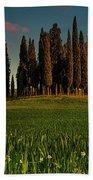 Cypress Circle Beach Towel by Chris Lord