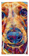 Dachshund 6 Beach Towel