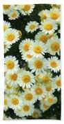 Daisy Crazy For You Beach Towel