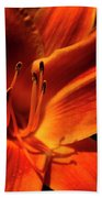 Day Lily Delight Beach Towel