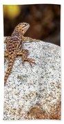 Desert Spiny Lizard H1809 Beach Towel by Mark Myhaver