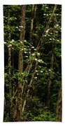 Dogwood Tree 2 Beach Towel