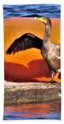 Double Crested Cormorant    Drying Wings         September        Indiana Beach Towel