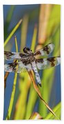 Dragonfly Perched By Pond Beach Towel