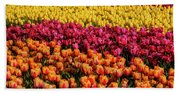Dreaming Of Endless Colorful Tulips Beach Sheet