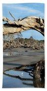 Driftwood Beach Beach Sheet