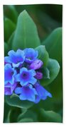 Dwarf Bluebell Detail Beach Towel
