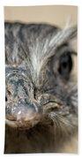 Emu Print 9052 Beach Towel