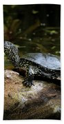 European Pond Turtle Sitting On A Trunk In A Pond Beach Towel