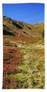Fall On The Mountains Beach Towel