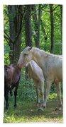 Family Of Horses Beach Towel