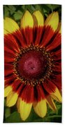 Firewheel Beach Towel
