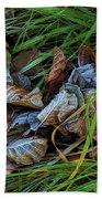 First Frost In Sweden Beach Towel