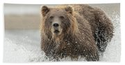 Fish Coastal Brown Bear Of Alaska Beach Sheet