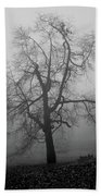 Foggy Tree In Black And White Beach Towel by William Selander