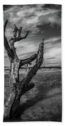 Folly Beach Lonesome Tree Beach Towel by Donnie Whitaker