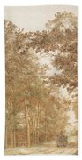 Forest Road Wi  Beach Towel