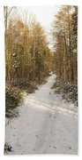 Forest Track In Winter Beach Towel