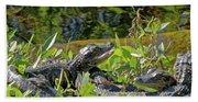 Gator Brood Beach Sheet