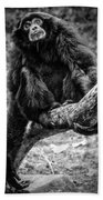 Gibbon Beach Towel